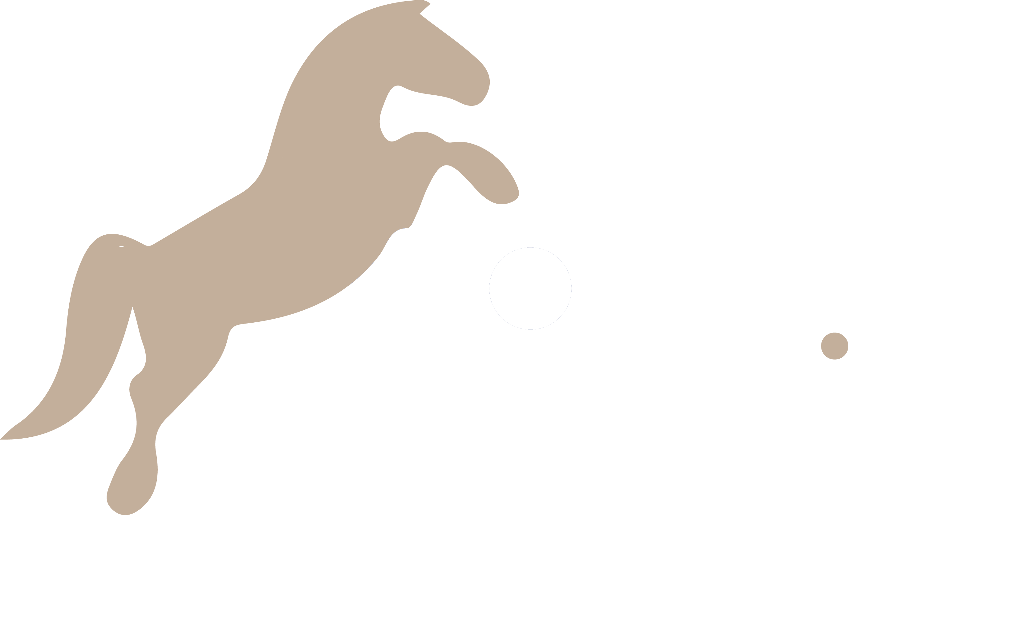 Equimedia agence de communication équestre au Maroc